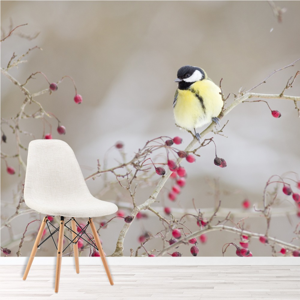 pinke blumen wandbild gelber vogel tapete m dchen. Black Bedroom Furniture Sets. Home Design Ideas
