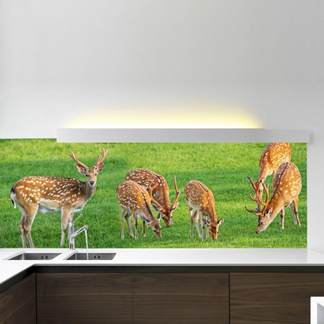 Deer Wall Mural Animal Nature Wallpaper Girls Bedroom Photo Home Decor
