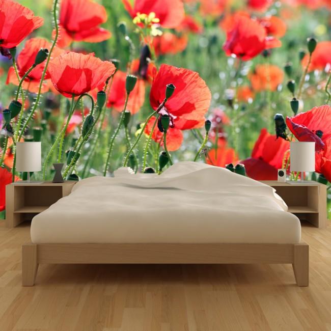 Red poppy flower wall mural floral meadow wallpaper living room next mightylinksfo