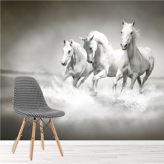 Horse Wall Mural Black And White Wallpaper Living Room