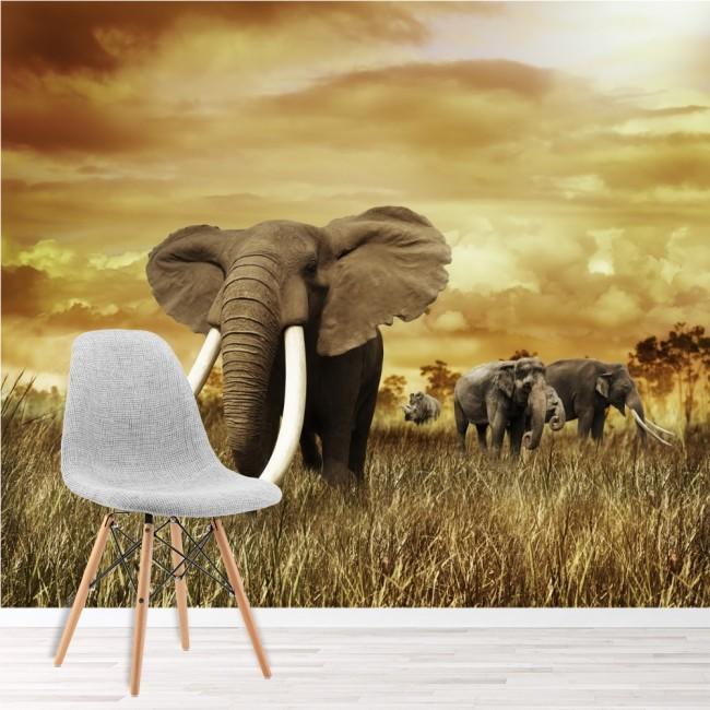 African Elephant Wall Mural Safari Animal Wallpaper Kids Bedroom