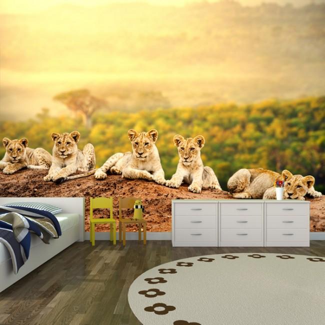 Cute Lion Cubs Wall Mural African Animal Wallpaper Kids Bedroom