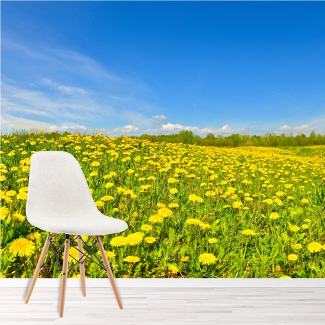 Yellow Dandelion Flowers Wall Mural Blue Sky Wallpaper Living Room ...