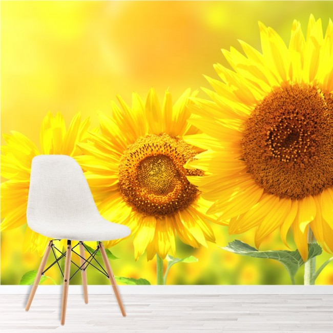 Bright Yellow Sunflowers Wall Mural Floral Wallpaper Bedroom Photo ...