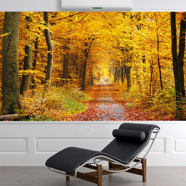Autumn Yellow Trees Wall Mural Forest Path Wallpaper