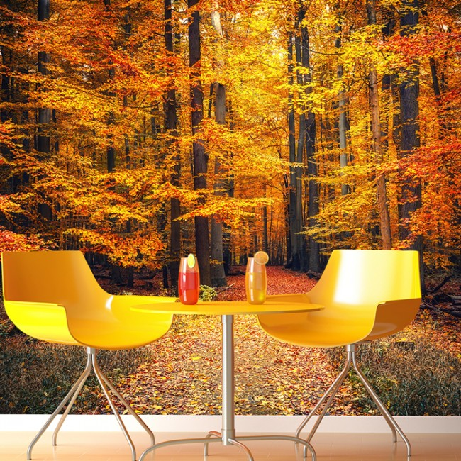 Autumn Trees Wall Mural Orange Red Forest Wallpaper Living Room