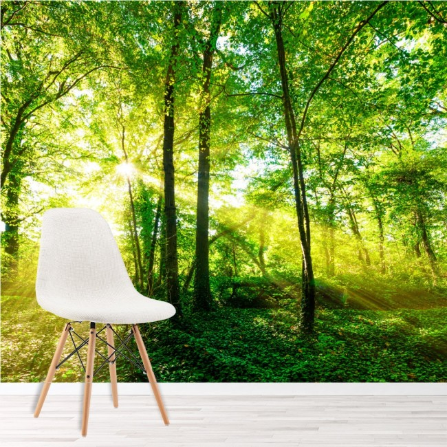 Green trees wall mural forest nature wallpaper living room for Nature room wallpaper