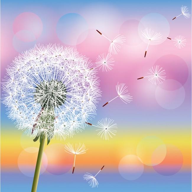 Dandelion flower wall mural rainbow wallpaper girls for Dandelion mural