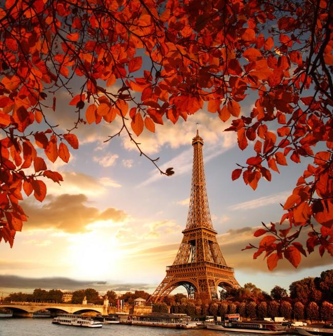 Eiffel Tower Autumn Paris Wallpaper Wall Mural