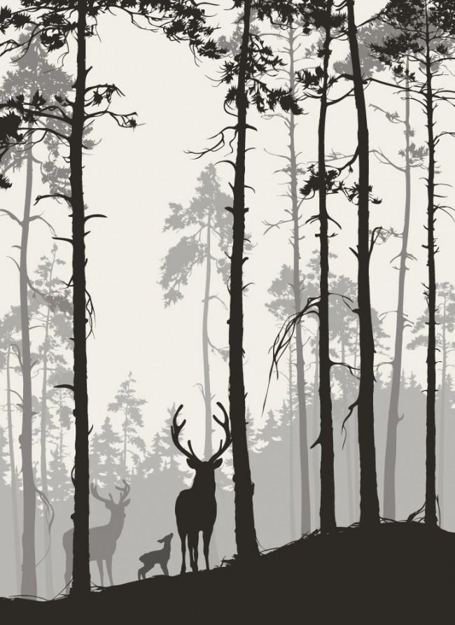 Woodland Forest Deer Wallpaper Wall Mural
