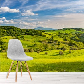 tuscan countryside wall mural green landscape wallpaper nature photo home decor