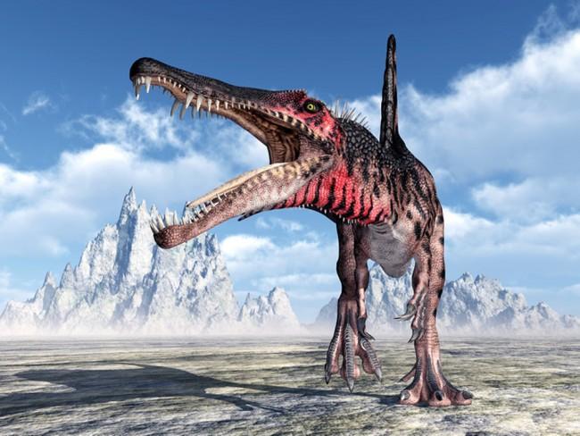 Spinosaurus Brullen Fototapete Dinosaurier Tapete Kinderzimmer Foto