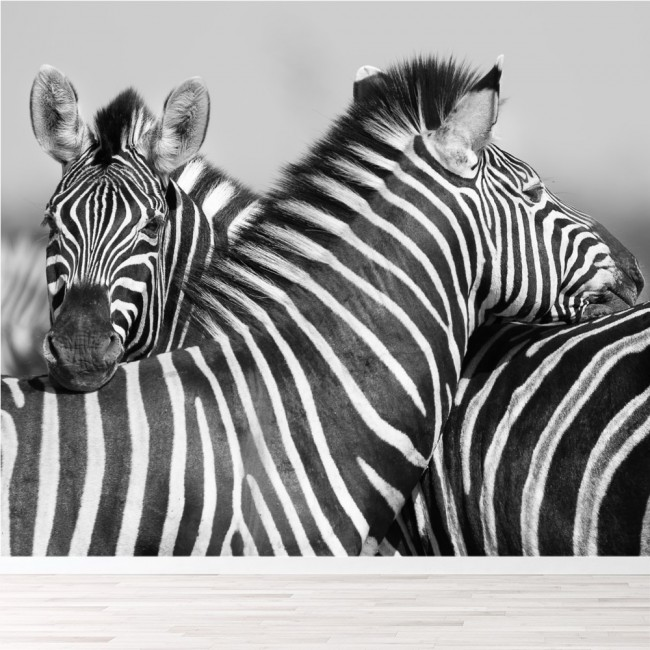 Schwarz & Weißes Wandgemälde Zebra Tier Tapete Schlafzimmer Foto ...