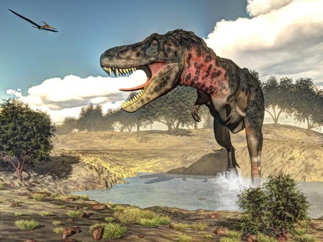 Dinosaurier Fototapete Tarbosaurus Jurassic Tapete Kinderzimmer Foto