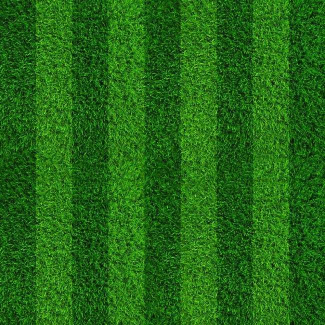 Soccer Field Green Grass Wallpaper Wall Mural