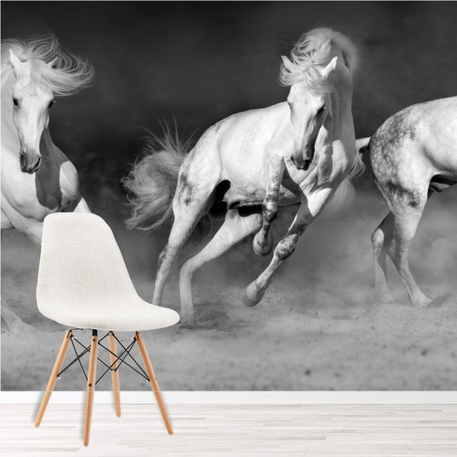Galloping Horses Black And White Wallpaper Wall Mural