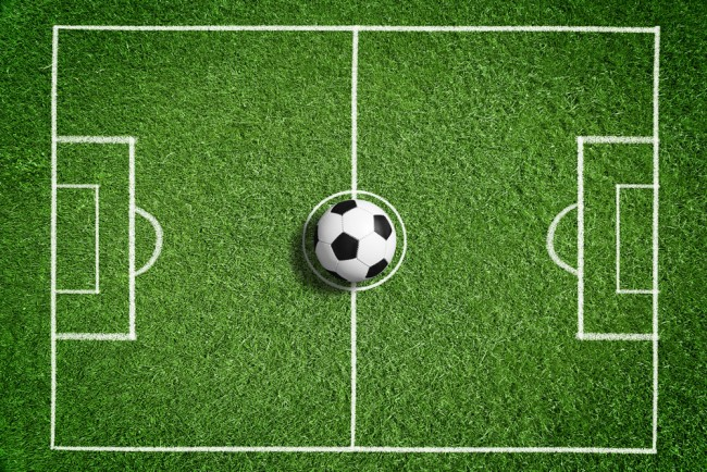 Football Pitch Wall Mural Wallpaper Ws 42395: Football Grass Pitch Wallpaper Wall Mural
