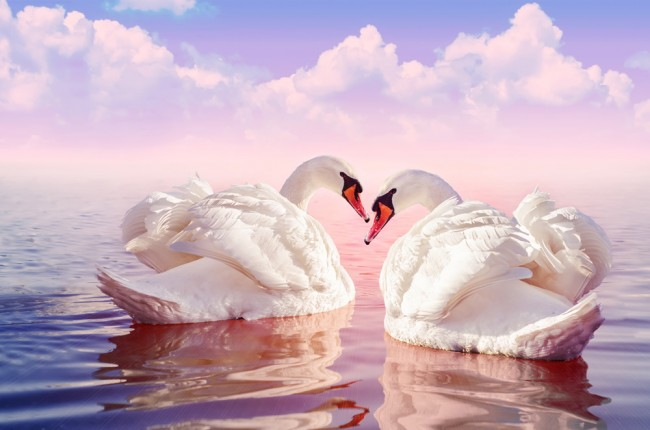 9500 Wallpaper Romantic Pictures Gratis Terbaru