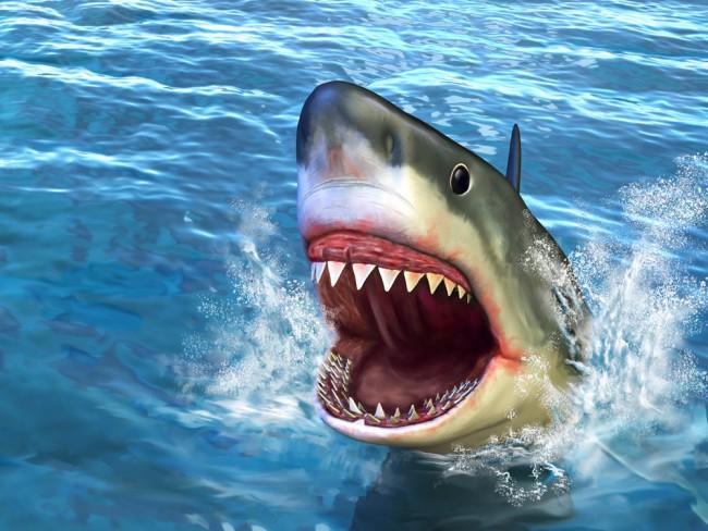 Shark Attack Wallpaper Wall Mural