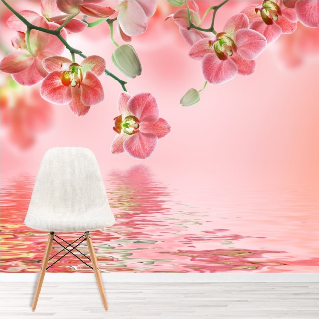 Pink Orchid Flowers On Water Wallpaper Wall Mural