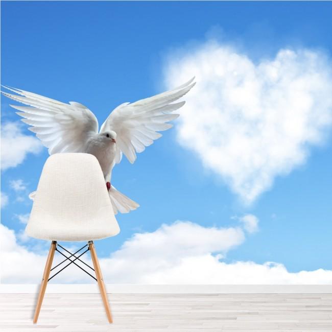 Uccello bianco di colomba Murale Cielo blu Sfondo Camera da letto ...
