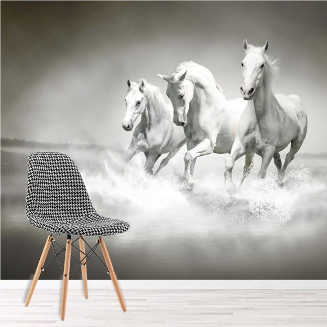 Cavallo Murale Bianco e nero Sfondo Soggiorno Camera da letto Foto ...
