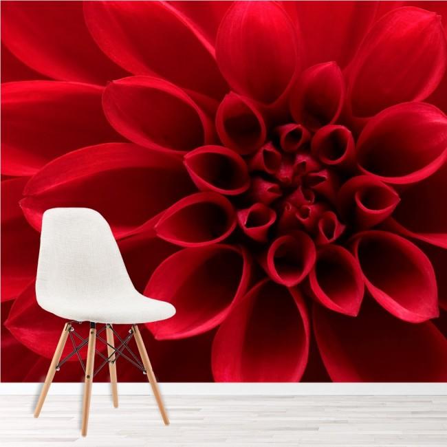 Petali di fiori rossi Fotomurali Floreale Carta Da Parati Camera da ...