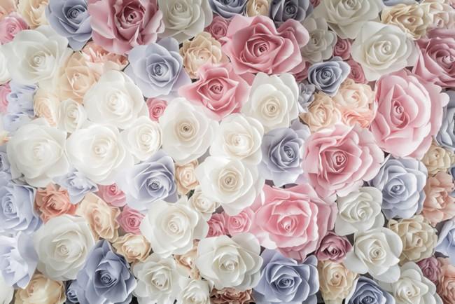 Carta Da Parati Rosa Bianca : Fiori rosa rosa fotomurali fiore bianco blu carta da parati ragazze