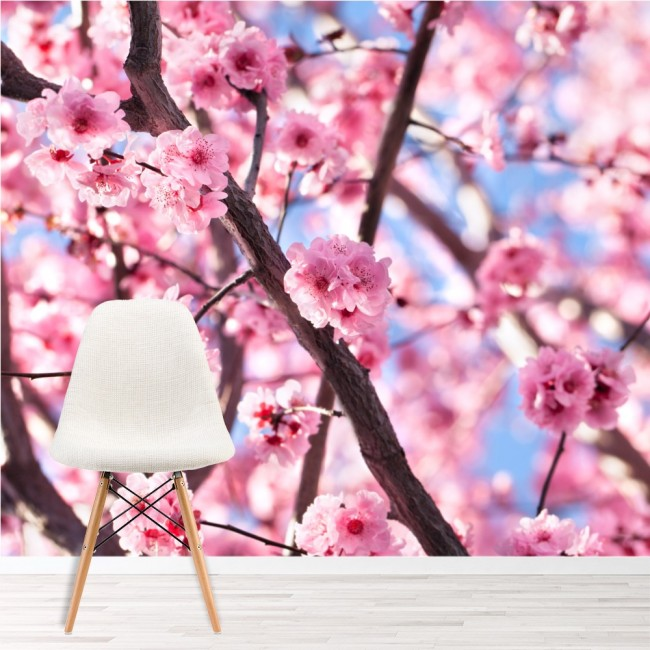 Pink Flower Tree Wall Mural Cherry Blossom Wallpaper