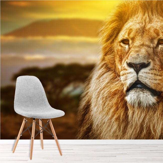 Lion Wall Mural African Animal Landscape Wallpaper Kids Bedroom Photo Home  Decor