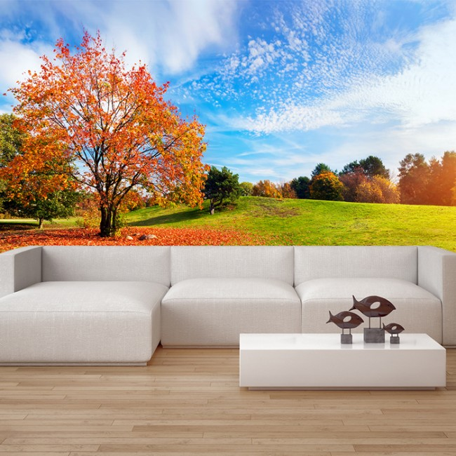 Autumn countryside wall mural forest tree wallpaper living for Autumn wall mural