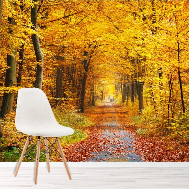 Autumn yellow trees wall mural forest path wallpaper for Autumn forest wallpaper mural