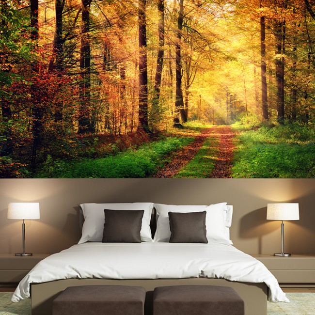 Sunlight Autumn Forest Path Wall Mural Woods Trees Wallpaper Nature