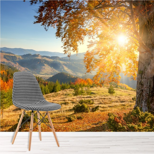 Mountain Sunrise Wall Mural Autumn Forest Wallpaper Living Room ...
