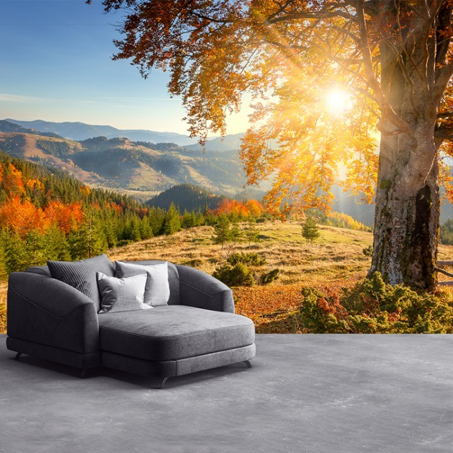 Mountain Sunrise Wall Mural Autumn Forest Wallpaper Living Room