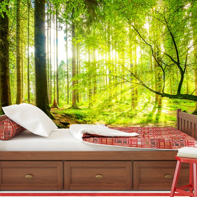 Green Tree Panoramic Wall Mural Forest Woods Wallpaper Living Room ...