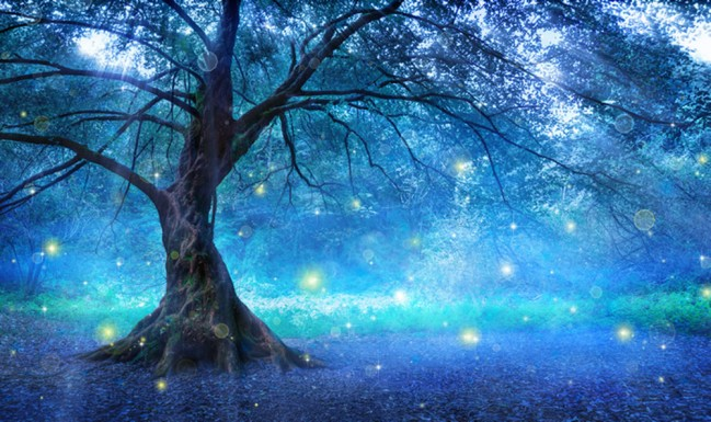Blue Fairy Tree Wall Mural Fairytale Forest Wallpaper