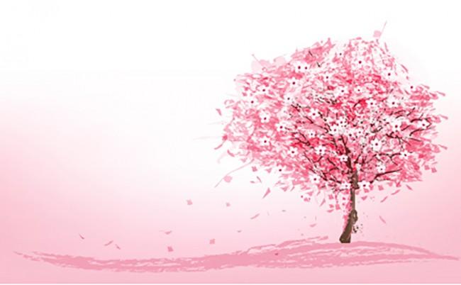 Pink Tree Cherry Blossom Wallpaper Wall Mural
