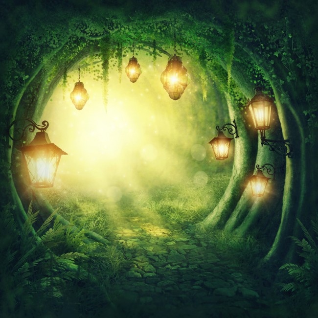 Enchanted Forest Path Childrens Fairytale Wallpaper Wall Mural